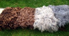 Curly Fluffy Flokati Rugs, Felt Fur, Hand Felted rug/ mat / Blanket by FeltFur . Made from 100 % pure wool by hand felting. Lovely, tactile, organic and animal friendly. Fluffy layer on one side and hand felted woollen fabric on the back. Very well made, no shedding. Easy to look after. Various sizes and shades .   https://www.etsy.com/uk/shop/FeltFur Our FB page https://www.facebook.com/FeltFur