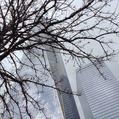 http://instagram.com/p/0yskhsrSzD/  #nyc