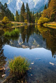 Fall in Yosemite National Park; photo by About Light Images
