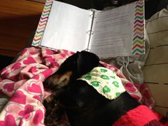 I studied with mom she reads too long