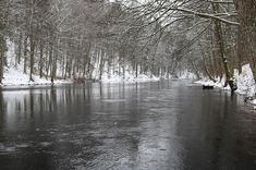 Image result for The Winter Morrum River Fishing Palm, Fishing, River, Image, Outdoor, Outdoors, Outdoor Games, The Great Outdoors, Peaches