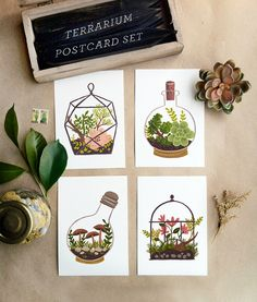 terrarium postcards #illustration