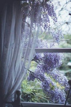 "rosiesdreams: ""Wisteria through the window "" Beautiful Flowers, Beautiful Places, Beautiful Pictures, Window View, Through The Window, Purple Aesthetic, Shades Of Purple, Belle Photo, Windows And Doors"