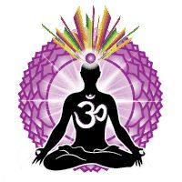 Chakras are energy centers inside the body; Using essential oils for chakra balancing can transform you into your very best self both physically and mentally. Pituitary Gland, Pineal Gland, Zen Yoga, Meditation, Arte Chakra, Reiki, Frankincense Oil, Physically And Mentally, Endocrine System