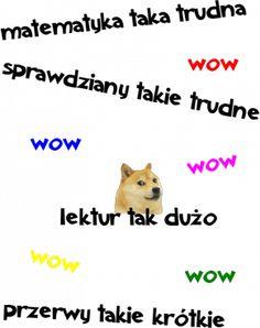 pieseł Nyan Cat, Doge, Humor, Memes, Humour, Meme, Funny Photos, Funny Humor, Comedy