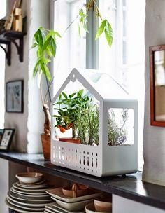IKEA PS 2014 Greenhouse plant holder by Swiss designer Nicolas Cortolezzis