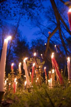 Imbolc is one of the four Gaelic fire festivals. Rather than bonfires, this one is traditionally celebrated with candles. Lots and lots of candles. Fire Festival, Festival Lights, Beltane, Imbolc Ritual, Wiccan, Magick, Witchcraft, Tarot, Beginning Of Spring