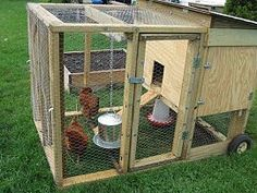 Chicken tractor...portable chicken pin, so you can move it to different places in your yard! love it!