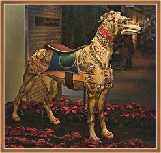 Image from http://www.funbeaches.com/Nights_Brookgreen/dog.jpg.