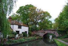 Basingstoke Canal, near Winchfield.