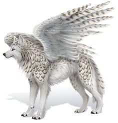 Anime Wolf With Wings Awesome - RetroModa Mystical Animals, Mythical Creatures Art, Mythological Creatures, Magical Creatures, Cute Fantasy Creatures, Beautiful Creatures, Fantasy Wolf, Fantasy Beasts, Fantasy Art