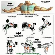 for chest Ashutosh Kumar Gupta  bhuily Ekma Saran Bihar  7631532091  @asts60  841208  Bjp members At Home Workouts, Gym Workouts, Chest Exercises, Chest Workouts, Triceps Workout, Chest And Tricep Workout, Fitness Motivation, Muscle Fitness, Mens Fitness