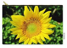 Sunflower Carry-all Pouch featuring the photograph Big And Beautiful by Cynthia Guinn