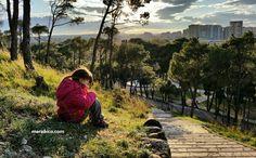 Tiempo de calidad con tus hijos....Un paseo por el parque
