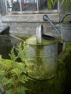 Watering can...old and well used :-}