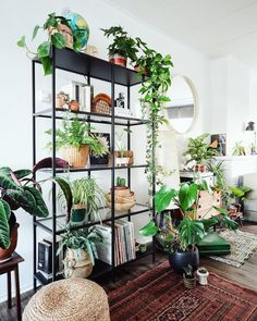 60 Plant Stand Design Ideas for Indoor Houseplants Page 64 of 67 LoveIn Home Room With Plants, House Plants Decor, Plant Decor, Ikea Vittsjo, Decoration Plante, Plant Shelves, Stand Design, Deco Design, Coastal Decor