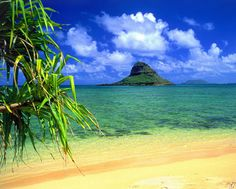 Chinaman's Hat, Oahu....We could see this from our lanai.