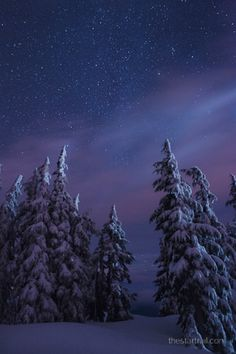 magicalnaturetour:  Brisk Starry Night (by Ben Canales)