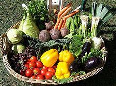 Cazuela de pollo y verduras light