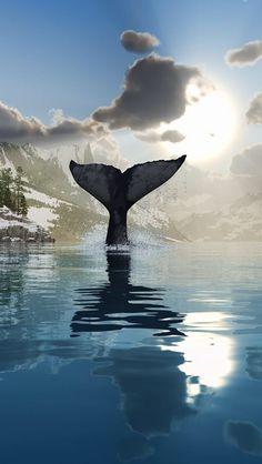 Whales tail SHOP: www.seayogi.es IG: @Seayogipalma Ropa para Yoga --- Yoga apparel & Gear
