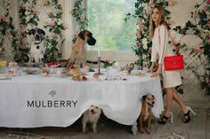 cara delevingne mulberry spring summer 2014 campaign 4
