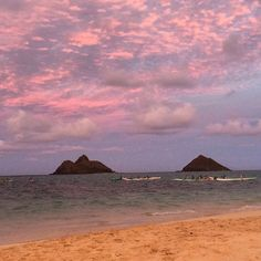 When you couldn't think #Lanikai could get prettier: Local #Hawaii girls doing open ocean #rowing  against pink #sky at #sunset. Wait for the #moonrise pics...:)