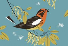 Illustration by Charley Harper Charley Harper, Art And Illustration, Bird Art, Artist Art, Art Lessons, Painting & Drawing, Illustrators, Drawings, Artwork