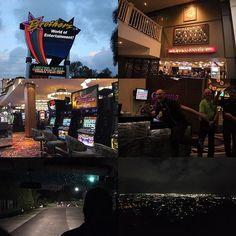 Instagram【miz_tangled】さんの写真をピンしています。 《Cairns night💋 #australia #cairns #night #dinner #brothers #local #casino #wildanimals #nocturnalanimals #ahjaile #wallaby #whiterock #nightview #cairnscity #nightmarket #オーストラリア #ケアンズ #夜 #ディナータイム #ブラザーズ #地元 #カジノ #野生動物 #夜行性 #アージャイルワラビー #ホワイトロック #夜景 #ケアンズ市内 #ナイトマーケット》