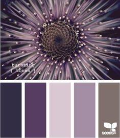 Design Seeds, for all who love color. Apple Yarns uses Design Seeds for color inspiration for knitting and crochet projects. Colour Schemes, Color Patterns, Color Combos, Colour Palettes, Paint Palettes, Design Seeds, Pantone, Color Concept, Color Palate