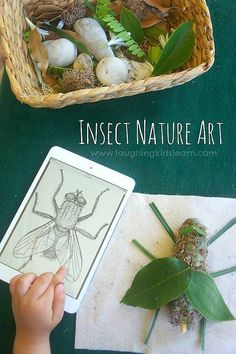 Insect Nature Art inspired by Australian Natural Pyrethrins. Get children into nature and outdoors and involve nature and the environment. Art Insect Nature Art inspired by Australian Natural Pyrethrins - Laughing Kids Learn Insect Activities, Nature Activities, Preschool Activities, Science Area Preschool, Science Nature, Nature Based Preschool, Reptiles Preschool, Waldorf Preschool, Forest School Activities