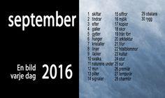 EnBildVarjeDag2016_Teman_M-9