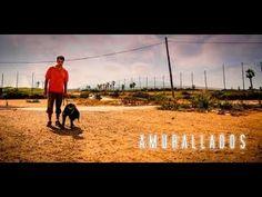 'Amurallados' sigue a un viajero acompañado de su perra guía, que busca comprender el funcionamiento de la frontera Sur España-Marruecos. Frente a un periodi...