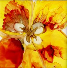 Pretty Tulip by Katherine Smith-Schad http://www.facebook.com/pages/FarmArt-by-Schad-Studio/152653478135041