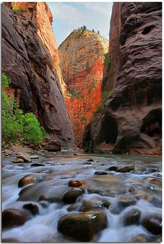 Just around the river bend in the Narrows in Zion NP