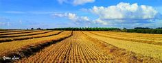 After the harvest  Fine Art Print Outdoor by septAAOUTDOOR on Etsy