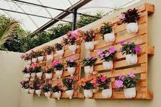 🌱🍀Inspirações❤🍀🌷🌷🍀🍀🌱❤🍀🌷🌱❤🍀🌱🌷❤🍀🌱🌷🍀🌱🌷🌱🌱🌷🌱🌷🌱🌷🌱🌷🌱🌷🍀💕😄 #hortaemvasos #hortaurbana #hortaemapartamento #instagarden  #reciclagemcriativa #hortacaseira  #flores #flowers #instanature #instagarden #décor #bomdia #caixotedefeira #gardener  #encontrandoideias #reaproveitar #minhahorta #decor #decoracaocriativa #reciclagem #splendid_nature #goodmorning #tin #sustentabilidade #homedecor #instadecor #ecodesign #pallets #decoracaosustentavel #caixotes #palletdecor