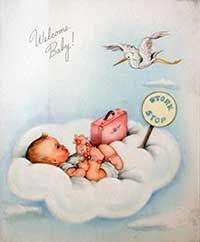 Greeting Card illustrations by Frances Wosmek
