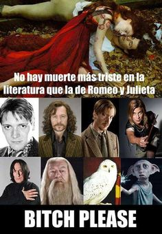 Tom Felton Harry Potter, Harry Potter Memes, Jk Rowling Libros, Welcome To Hogwarts, Dear Students, Hp Facts, Darry, Slytherin, Anime