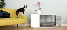 New Fido Studio Dog Crate | Dog Products | Omlet