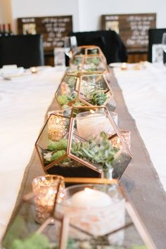 Wedding Theme Ideas Succulent wedding centerpiece idea - succulents in gold terrariums Photography } - Venue: Cleveland Botanical Garden Succulent Wedding Centerpieces, Terrarium Centerpiece, Wedding Flower Arrangements, Centerpiece Flowers, Centerpiece Ideas, Succulent Table Decor, Unique Centerpieces, Succulent Terrarium, Succulant Wedding