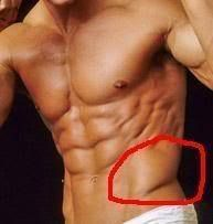 The 5 Best Oblique Exercises to Get Ripped Up Abs - Lean It UP!