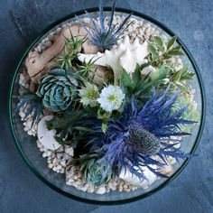 Centerpiece idea: succulent garden centerpiece with beautiful indigo sea holly