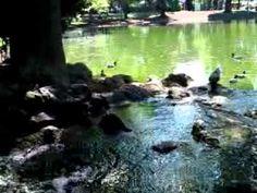 Steinwaschung Stadtpark Wien. - World, Youtube, Urban Park, The World, Youtubers, Youtube Movies