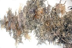 Cerebral Mapping: altered book sculpture by Jessica Drenk