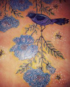 @hannakarlzon a #detail #bird #sommarnatt #coloringbook #hannakarlzon…