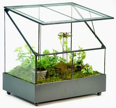 Amazon.com: H Potter Terrarium-fairy Garden Display Case: Pet Supplies