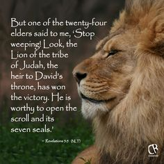 Revelation But one of the twenty-four elders said to me, 'Stop weeping! Look, the Lion of the tribe of Judah, the heir to David's throne, has won the victory. He is worthy to open the scroll and its seven seals.