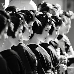 Maiko (apprentice geisha) and geiko (geisha) make their way round the tea houses of the Miyagawa-cho district in Kyoto, Japan to wish people a happy new year. Geisha Japan, Japanese Geisha, Japanese Beauty, Kyoto Japan, Japanese Modern, Japanese Style, Japanese Girl, Black And White People, Black White Photos