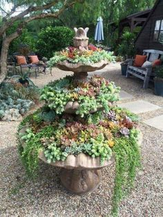 41 Beautiful Fountain Design Ideas To Makes Your Garden More Beautiful Succulents In Containers, Cacti And Succulents, Planting Succulents, Succulent Landscaping, Backyard Landscaping, Prayer Garden, Fountain Design, Garden Fountains, Fountain Garden