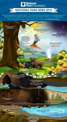 "Infographic: ""Go Wild"" for National Parks #nationalparkweek"